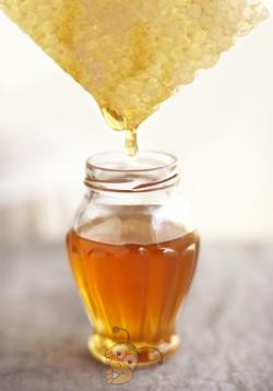 Все о мёде