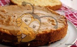Очень вкусный нежный медовый бисквит
