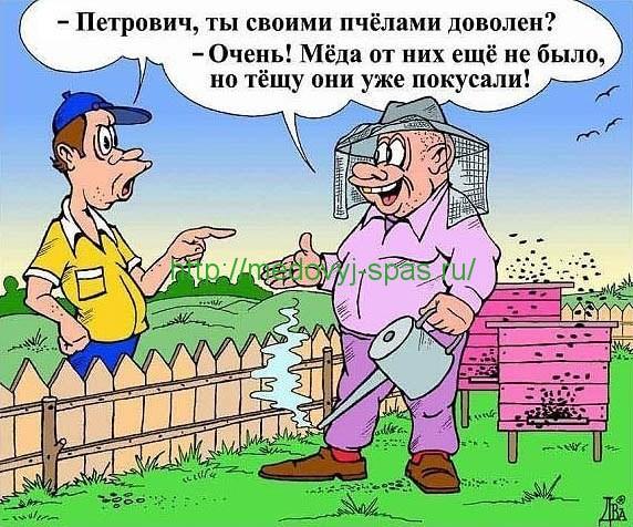 Юмор. Петрович и его пасека